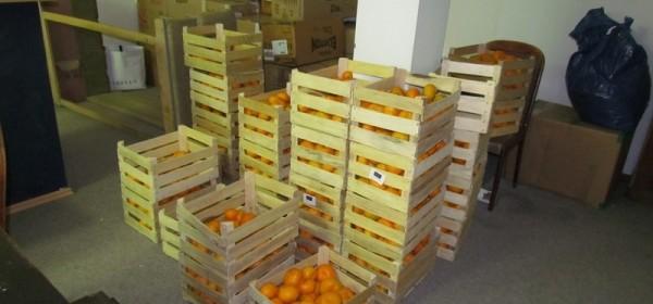 Podjela mandarina iz doline Neretve