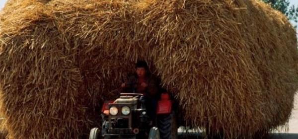 O izravnim plaćanjima u poljoprivredi