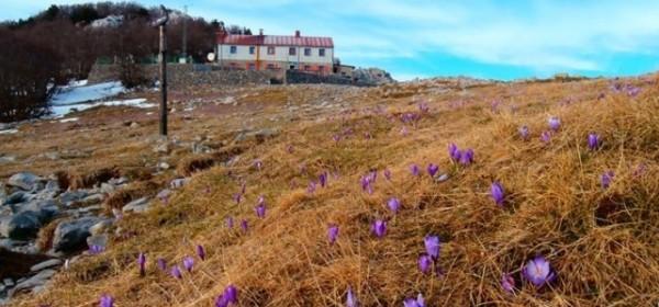 NP Sjeverni Velebit od danas otvoren za sve posjetitelje