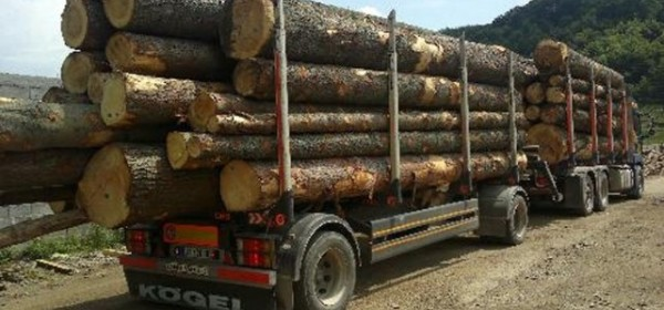 Drvoprerađivači Ličko-senjske županije u nezavidnu položaju