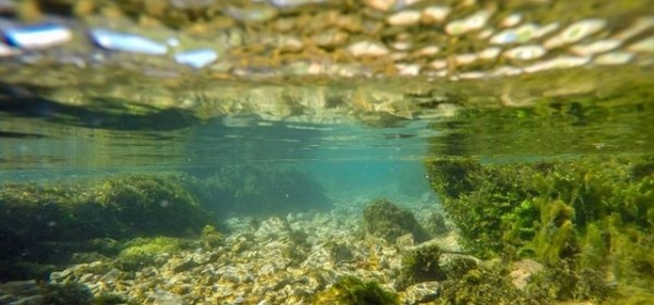 Pogled iz vode, iz Gacke, naravno