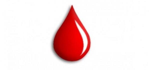 Dobrovoljno darivanje krvi - 13. listopada