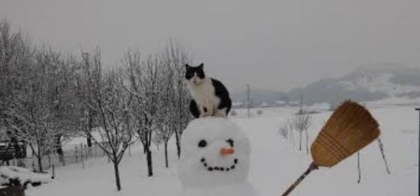 Čudn(ovat)i čovićki snjegovići!