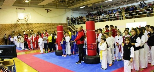 """Izvrstan početak - prvi taekwondo turnir  """"BRINJE OPEN"""" u Brinju"""