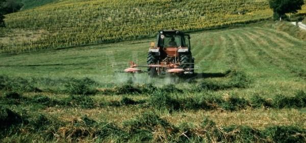 Edukacija za poljoprivrednike korisnike mjera ruralnog razvoja
