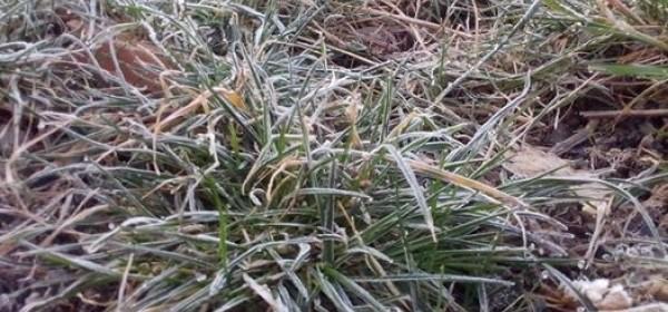 Jutros Otočac na -3°C, veliki mraz !