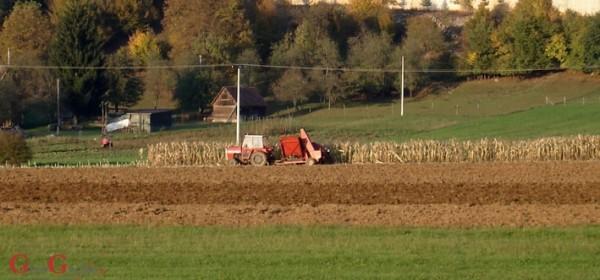 Okasnili jesenji radovi na polju