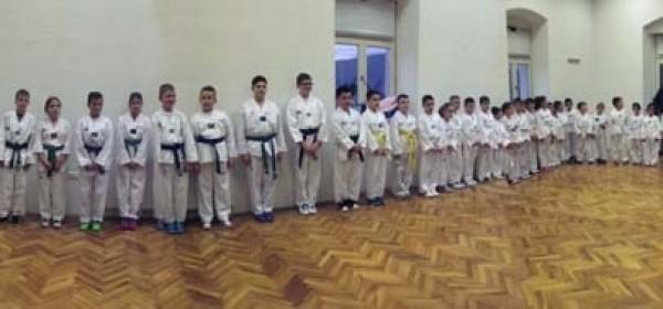 Sjajni rezultati Taekwondo kluba Gacka u 2015. godini
