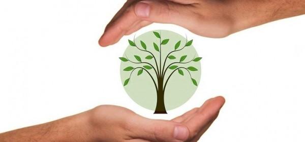 Traje natječaj za ulaganja u poljoprivredna gospodarstva