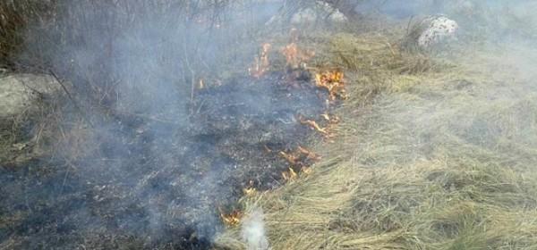 Nikad ranije paljenje suhe trave