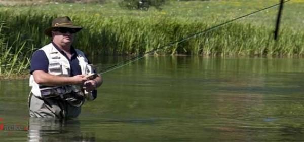 O šaranskom ribolovu na vodama Gacke