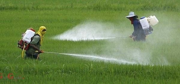 """Edukacija """"Izobrazba o sigurnom rukovanju pesticidima"""" u Otočcu"""
