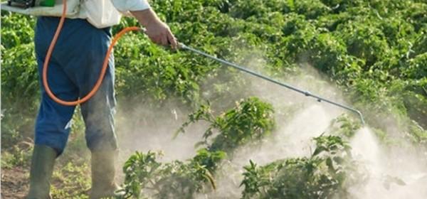 Izobrazba o sigurnom rukovanju pesticidima u Brinju