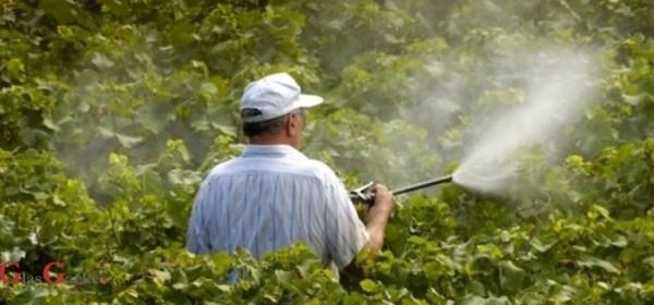 """Edukacija o """"Održivoj uporabi pesticidima"""""""