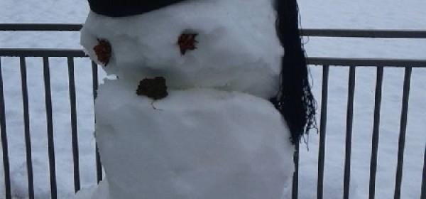 Otvoren je 4. festival snjegovića!