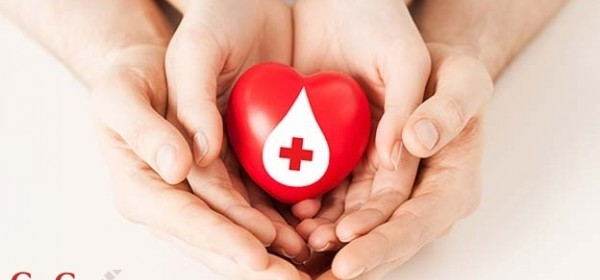 13. veljače - darivanje krvi u Općini Plitvička Jezera