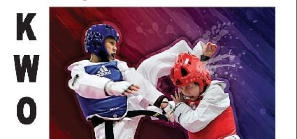 Taekwondo 2.adidas - Brinje Open 2016