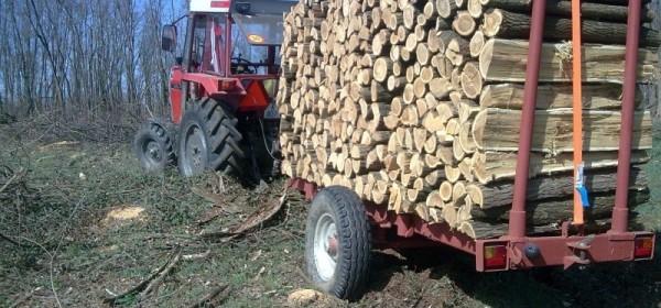 Poginuo prilikom rezanja drva od nepoznate naprave