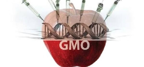 """Predavanje u KIC-u """"Kontroverze genetski modificirane hrane"""""""