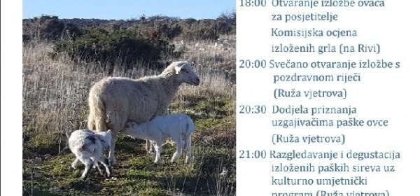U Novalji Izložba paške ovce i sira