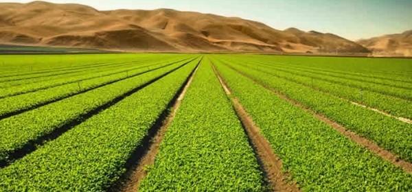 Poziv na osnivanje Udruženja poljoprivrede