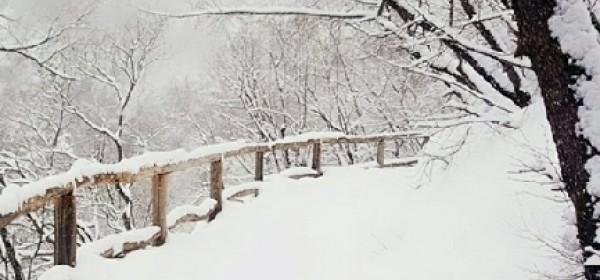 Obilazak NP Plitvička jezera zatvoren za posjetitelje do daljnjega
