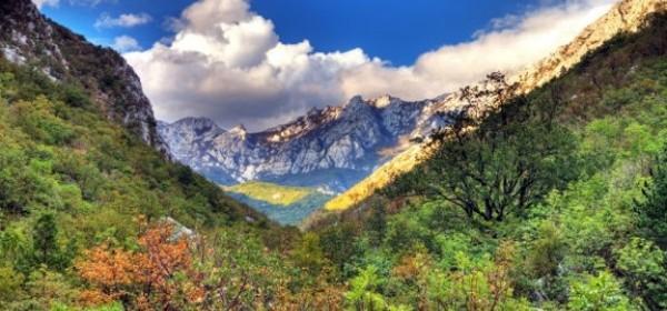 Park prirode Velebit u Tjednu botaničkih vrtova