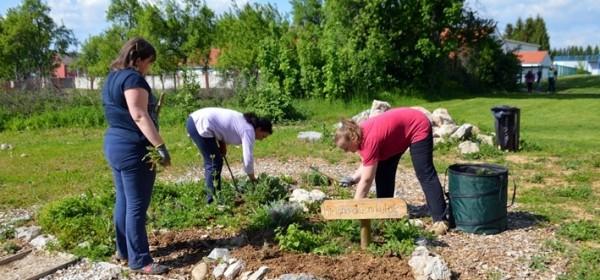 Danas akcija u Urbanom vrtu Gospić