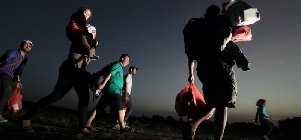 Šverc emigranata - unosan posao