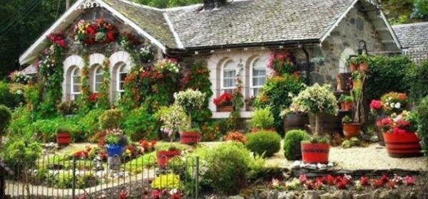 Kućica u cvijeću, trava oko nje …