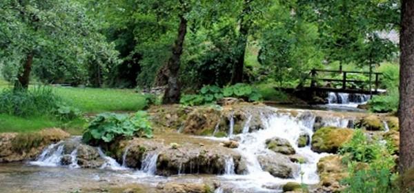 Hoće li pravo na vodu biti ustavna kategorija?