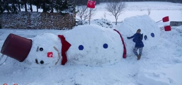 To se zove snjegović!