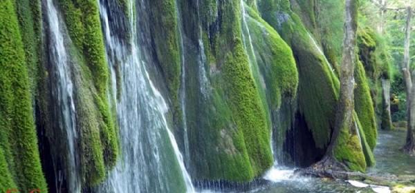Tjedan flore i faune NP Plitvička jezera