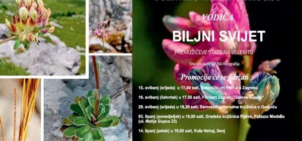 Biljni svijet Premužićeve staze na Velebitu