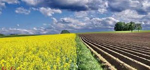 Investicijski krediti za ruralni razvoj
