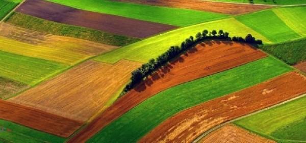 Nove mjere pomoći poljoprivrednicima