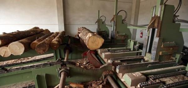 10 milijuna kuna bespovratne pomoći drvoprerađivačima na Banovini