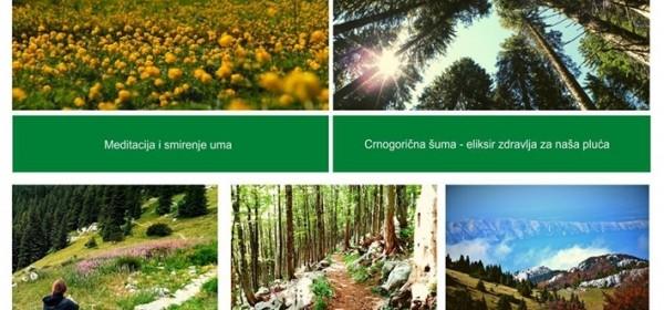 24. svibnja - Europski dan Parkova