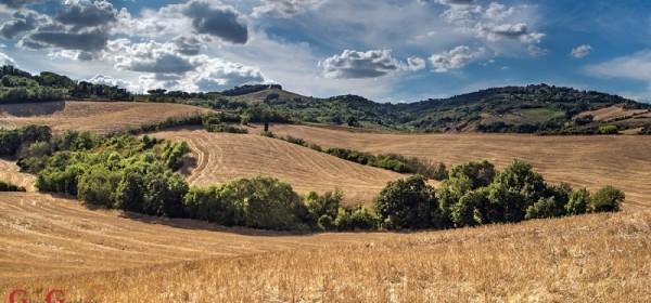Produženje roka primarnima poljoprivrednim proizvođačima za prihvaćanje Odluka u AGRONET-u
