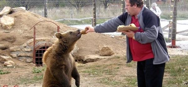 Macola pobijedio Društvo prijatelja životinja i neke europarlamentarce, dobio je dozvolu za medvjede