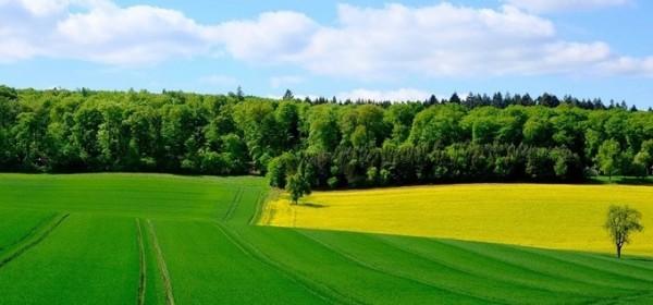 U e-savjetovanju Nacrt prijedloga Strategije poljoprivrede do 2030. godine