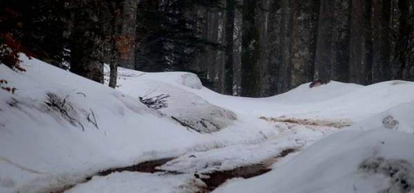 U NP Sjeverni Velebit ima snijega na cestama
