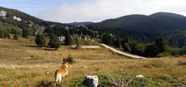 HIGHLANDER Velebit Croatia u potrazi za volonterima