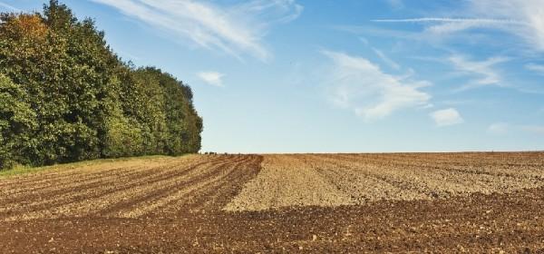 Novi natječaj za obnovu poljoprivrednog zemljišta