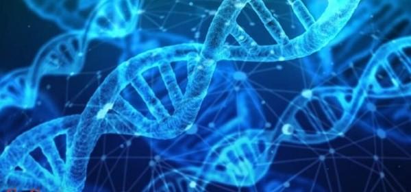 Izvršni direktor Moderne dr. Tal Zaks, priznao je da mRNA mijenja DNK