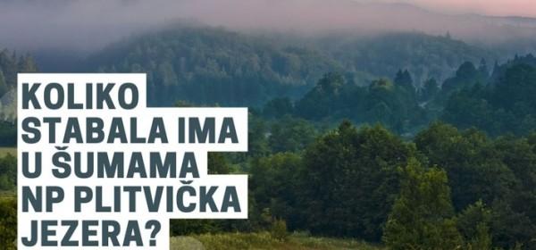 Nagradni natječaj – koliko stabala ima u šumama NP Plitvička jezera?