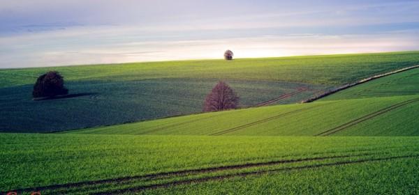 Izmjene i dopune mjera u poljoprivredi
