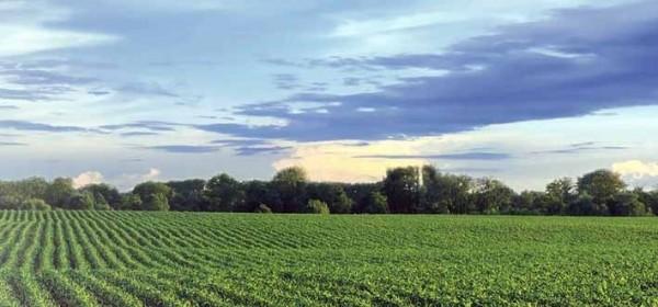 Milijun kuna za potpore u poljoprivredi