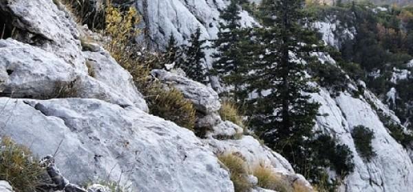 Tjedan odmora vrijedan u NP Sjeverni Velebit cijene upola niže
