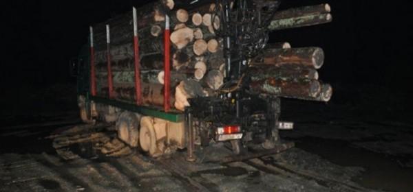 Treba drva
